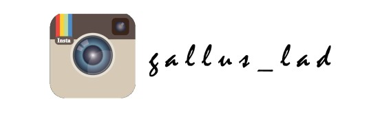 GallusLad - Social Instagram