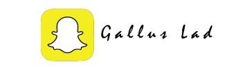 GallusLad - Social Snapchat